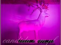 biały jeleń ozdabiający kominek, wysokość jelenia ok. 2,3 m długość ok 2m, dekoracje eventowe, kwiaty dla firm
