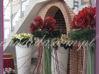dekoracja bożonarodzeniowa bufetu, amarylisy z dereniem w dużych naczyniach szklanych, wianki z jodły, gwiazdy betlejemskie w wysokich donicach, dekoracje eventowe, dekoracje bożonarodzeniowe dla PGNIG