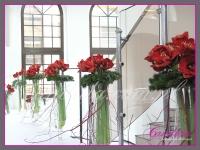 dekoracje bożonarodzeniowe z amarylisów, derenia, wianek z jodły, dekoracje eventowe, dekoracje bożonarodzeniowe dla PGNIG