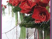 dekoracja bożonarodzeniowa z amarylisów, dekoracje eventowe, dekoracje bożonarodzeniowe dla PGNIG