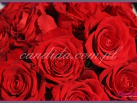 bukiety z czerwonych róż, dekoracje eventowe, kwiaty na konferencję prasową BZ WBK z udziałem Kevin Spacey