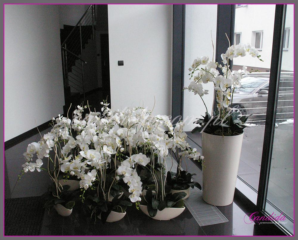 Dekoracja biur kwiatami sztucznymi. Dekoracja na recepcji, dekoracje w pokojach pracowników, dekoracja holi.